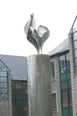 'Chanticleer' by Conor Fallon in the Belgrove Student Residences.