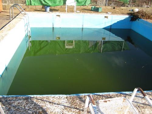 Ver tema mi proyecto de estanque for Estanque de agua 4000 litros