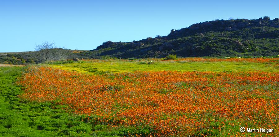 Namaqualand Africa