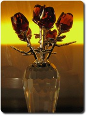 perfume(0.0), orange(0.0), painting(0.0), glass(0.0), trophy(0.0), lighting(0.0), organ(0.0), amber(1.0), flower(1.0), yellow(1.0), amber(1.0),