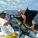 Brent's catch in bluewater off the Pacific coast of Costa Rica by Peace Correspondent