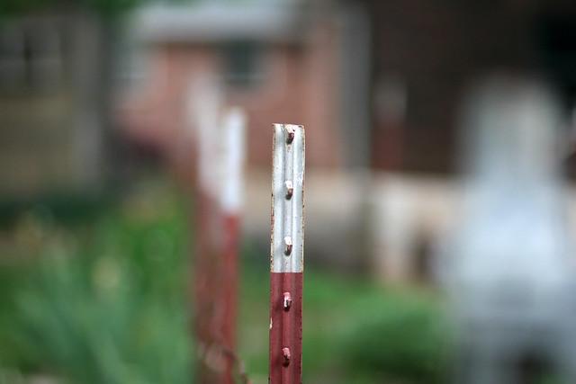 Fence Post, f/1.8