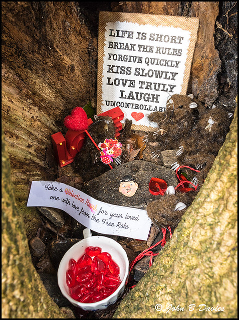 Clyne Gardens - FREE Valentine Hearts from the TREE RATS -