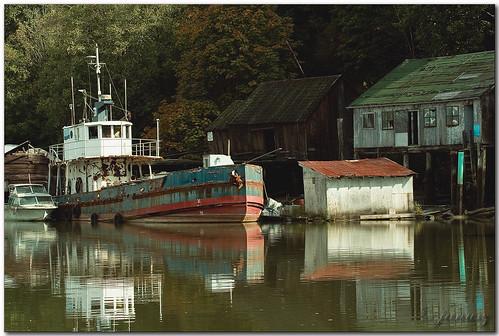 geotagged fishing village salmon surrey soe fraserriver janusz leszczynski passionphotography shieldofexcellence platinumphoto flickrdiamond geo:lat=49172859 geo:lon=122919352