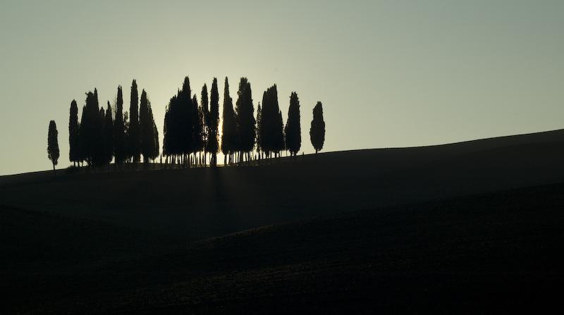 Val d'Orcia - alba al boschetto dei cipressi