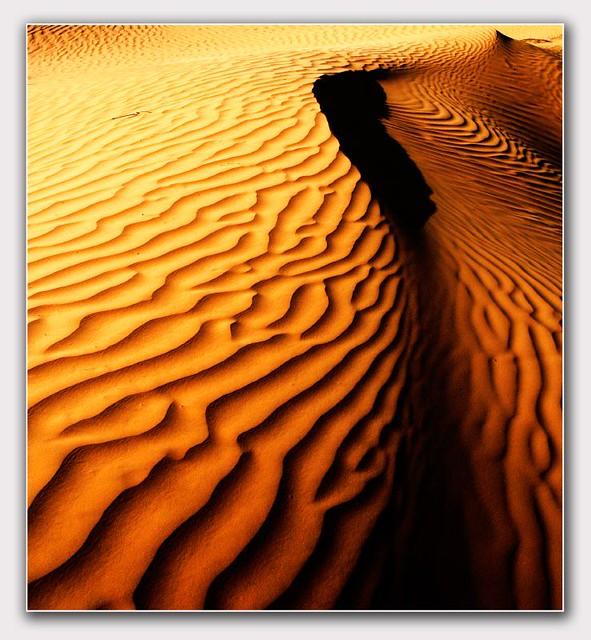 dunas-Gran Erg Oriental