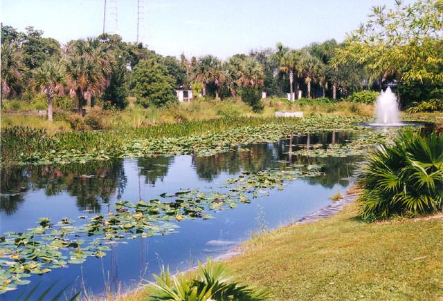 St Petersburg Botanical Gardens Pond Flickr Photo Sharing