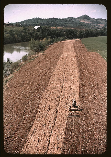Planting corn along a river in Tennessee  (LOC)
