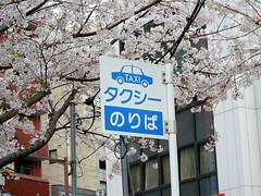 JR 駒込駅「タクシーのりば」