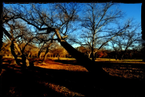 Autumn at Audabon Park, Garland, Texas