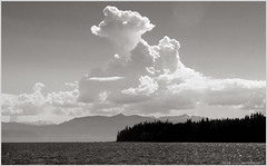 clouds bw