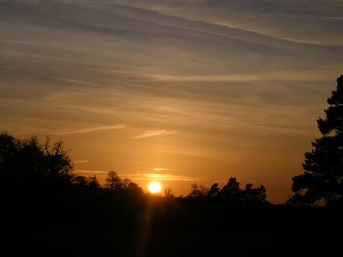 Sundown, Knole Park