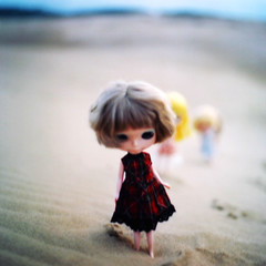 planet of the blythes - film version - hasselblad