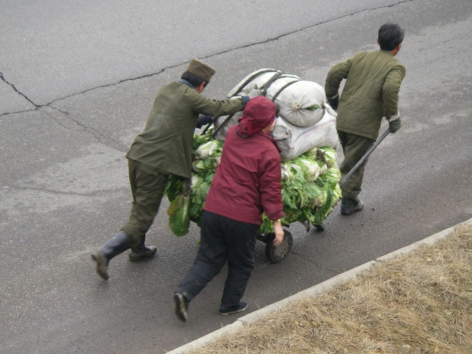 Kimchi season, 4
