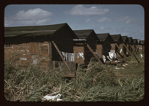 Houses which have been condemned by the Board of Health but are still occupied by Negro migratory workers, Belle Glade, Fla. (LOC) by The Library of Congress