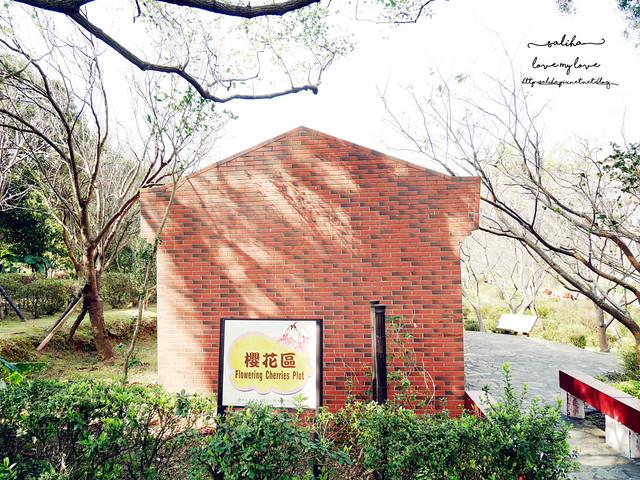 陽明山一日遊免門票景點花卉試驗中心 (5)