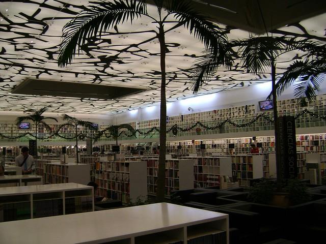 Libreria Rosario Castellanos