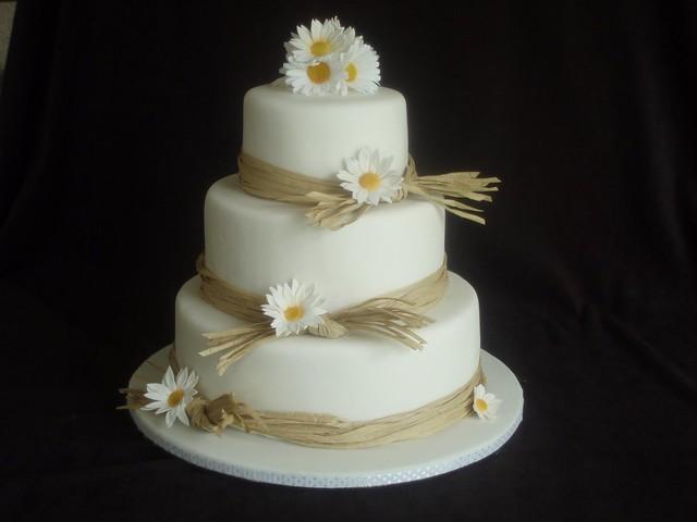 Simple+Daisy+Wedding+Cakes Daisy and Raffia wedding cake  I made this ...