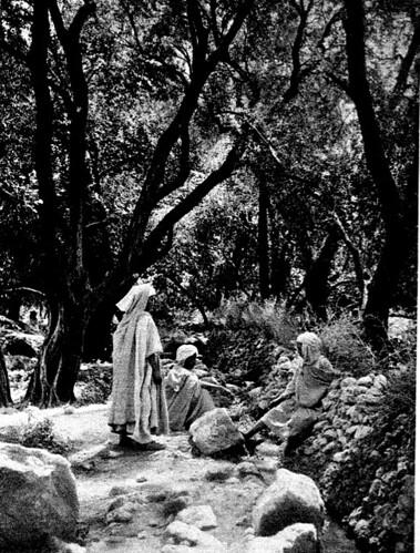Farhi farmers waiting for their watering turns, 1902