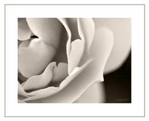 Layers - Monochrome #18