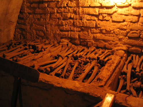 Bones in the Monasterio de San Francisco, Lime, Peru. Photo by Phil Whitehouse.