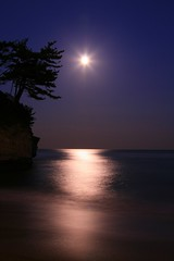 Moonlight (cormorant point)