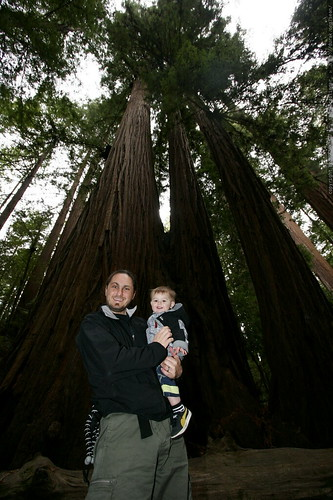 sean & sequoia under the heritage grove redwood trees    MG 7961