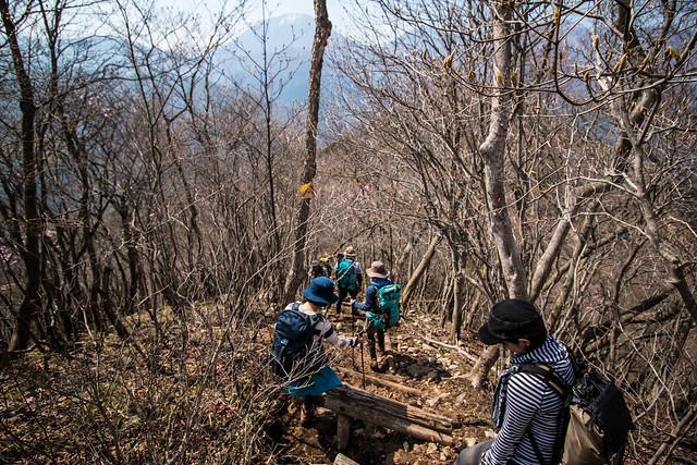 20150425-鳴虫山-0304.jpg