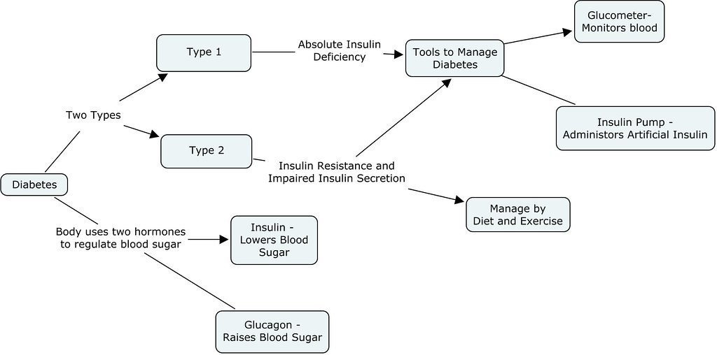 Hormone Concept Map.Diabetes Concept Map C Ander Flickr