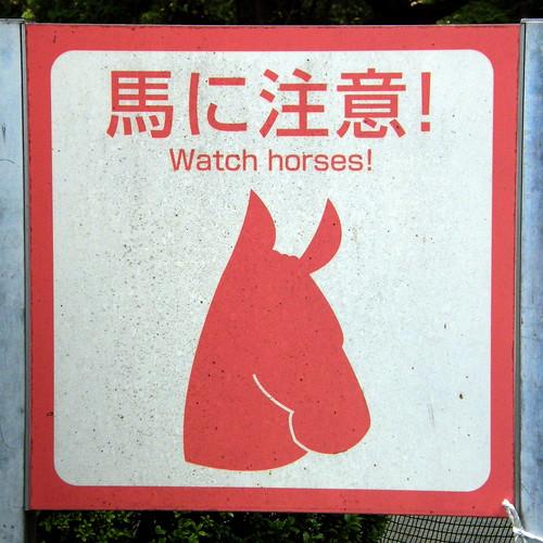 #9906 watch horses (馬に注意)