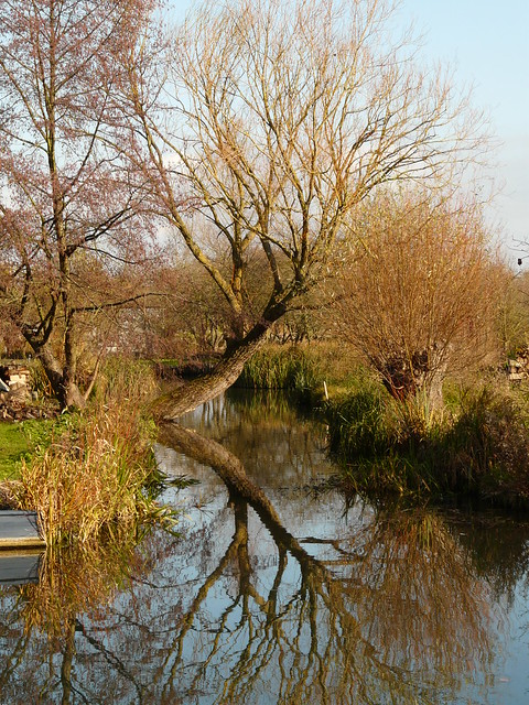 Marais de Bourges (ma ville natale - Cher) - The Marshes of Bourges (my home town - Cher - France)