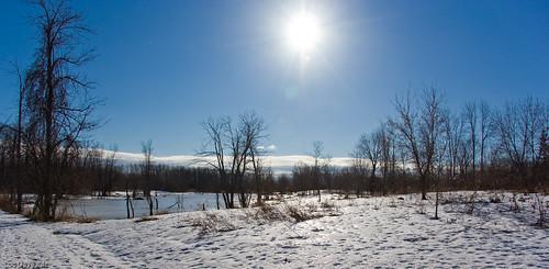 park winter sun lake canada nature landscape dead soleil quebec montreal mort hiver lac québec luc paysage parc photoquebec deveault lucdeveault