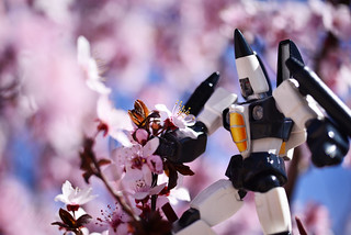 Ramjet loves nature.