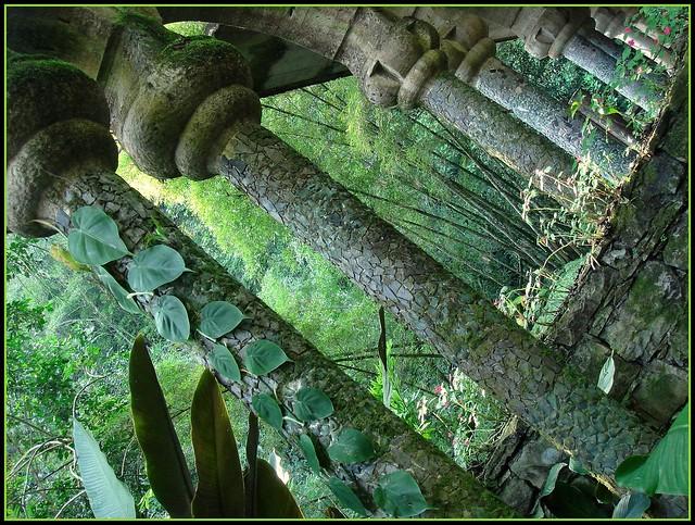 Las Pozas - Xilitla SLP México 2007 8394