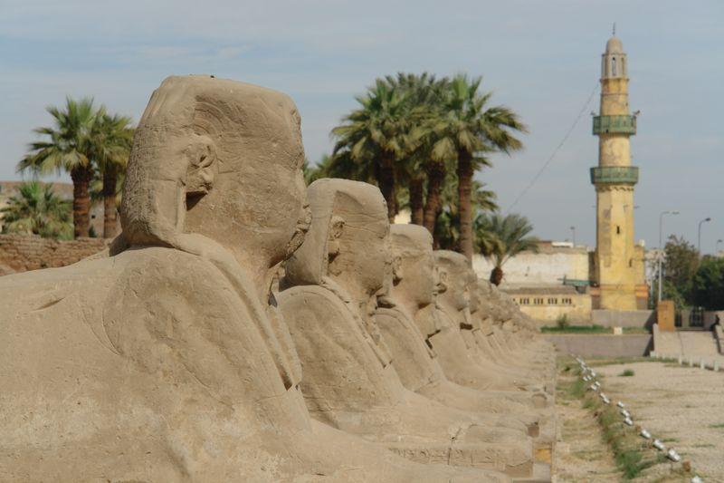 Luxor, Avenida de las Esfinges Templos a la orilla del río Nilo en Egipto - 2473731957 66258d0b32 o - Templos a la orilla del río Nilo en Egipto