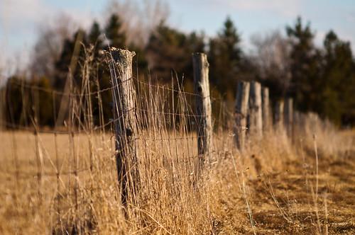 ontario canada fence open farm country expanse canada544882