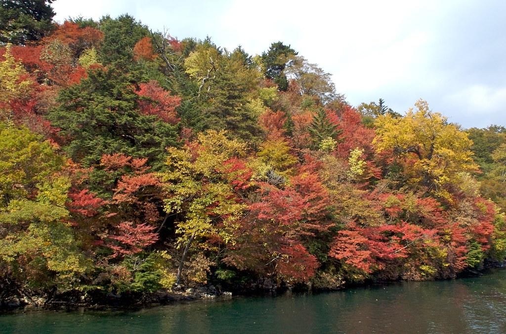 中禅寺湖畔の紅葉1