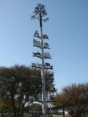 arecales(0.0), plant(0.0), overhead power line(0.0), mast(0.0), wind(0.0), tower(0.0), spruce(0.0), pole(1.0), tree(1.0),