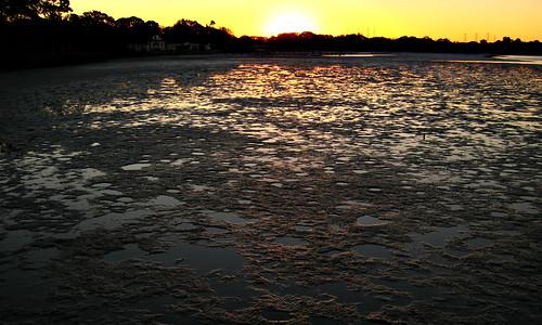 sunrise pier florida oldsmar project365