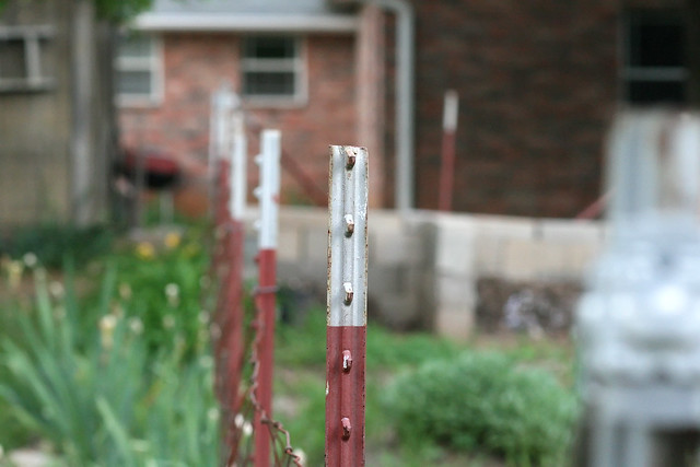 Fence Post, f/5.6