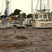 Marina storm debris