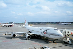 My JAL Jet to Italy