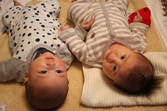 baby collaboration