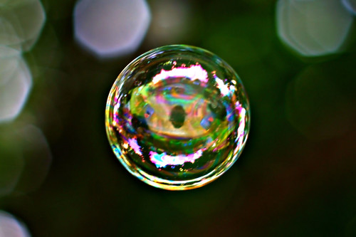 cats macro eye grass yard photography soap rainbow sony bubbles blow bubble series 300 alpha dslr 2008 catseye a300 α dslra300 α300 dslra300k αlpha dslrα300 dslrα300k