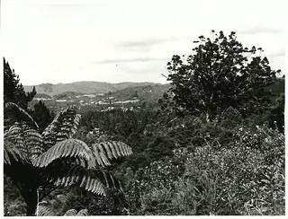 Titirangi, view from Scenic Drive near Auckland City.