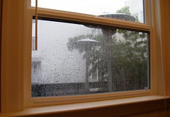 window treatment(0.0), wall(0.0), window screen(0.0), window covering(0.0), door(0.0), daylighting(1.0), window(1.0), sash window(1.0), wood(1.0), room(1.0), glass(1.0), interior design(1.0), hardwood(1.0),