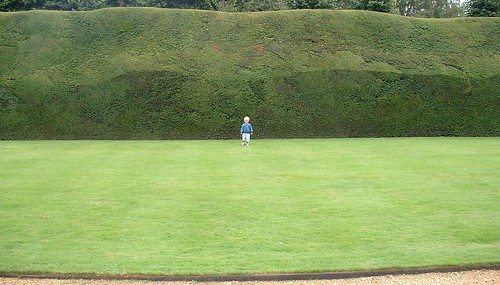 2338193809 db0be64dfa Big Hedge, Tiny Person