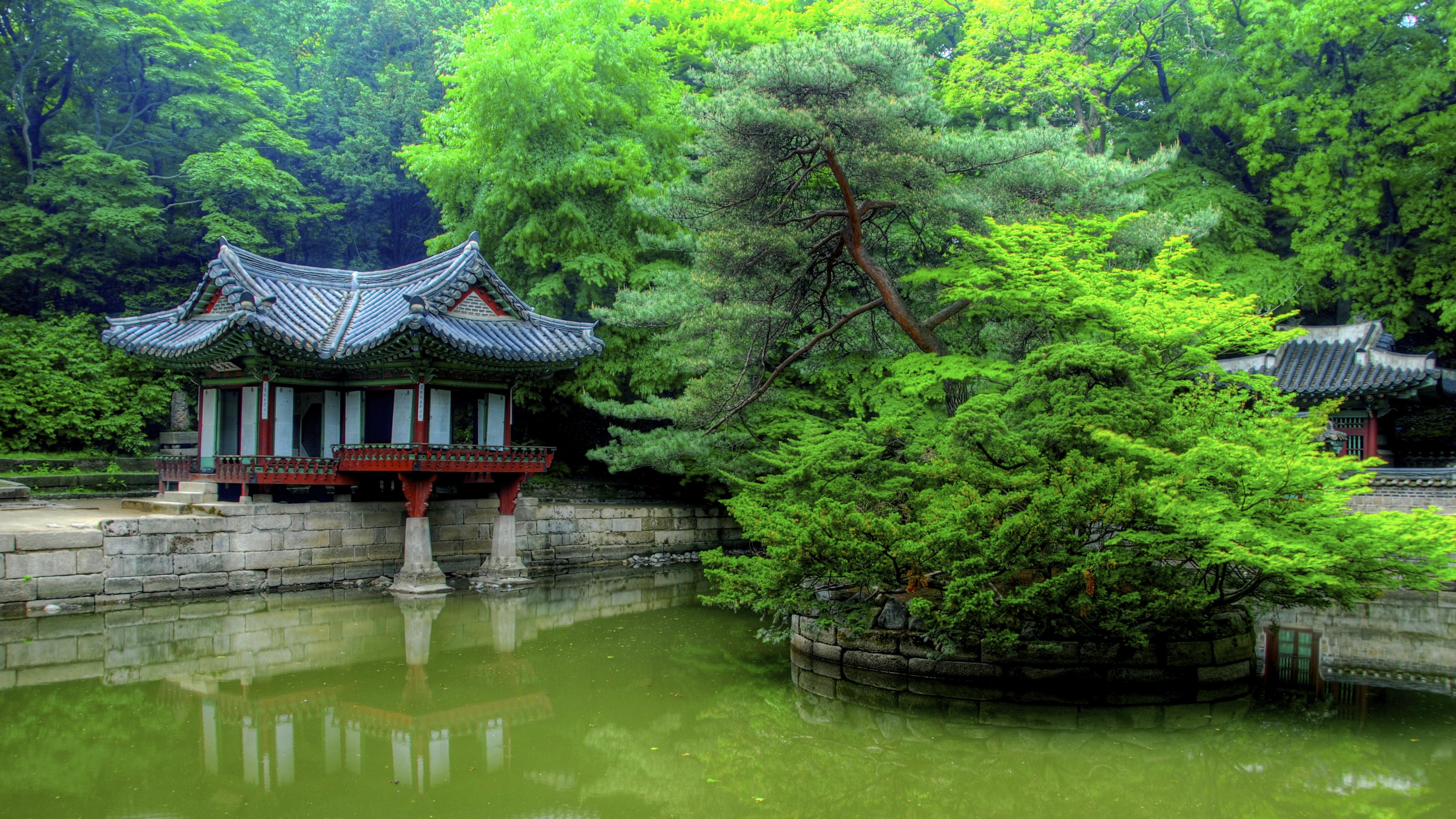 Seoul's Secret Garden | Changdeokgung Palace, Seoul, Korea ...