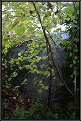 Ligne Aulnay-Verberie par Senlis