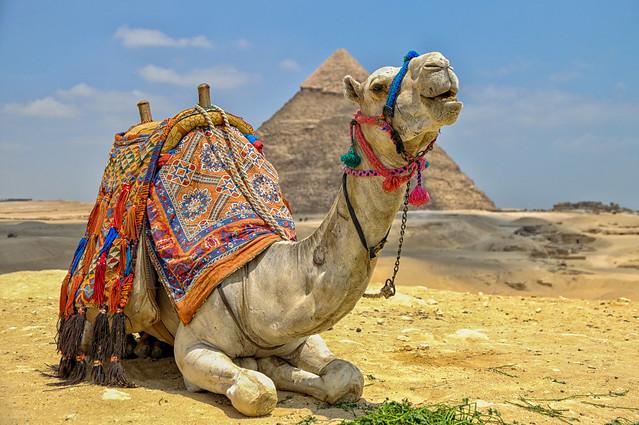 Agypten 2010